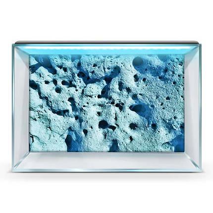 Наклейка морского дна с рыбами в аквариум 40х65 см., фото 2
