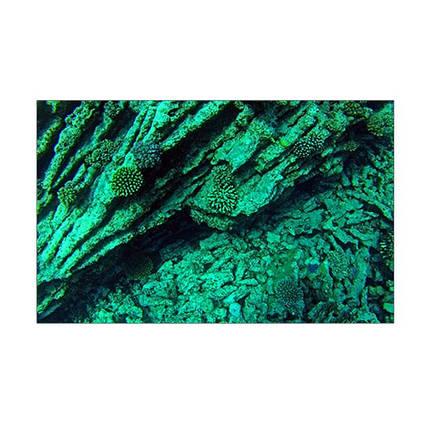 Морской мир под водой на наклейке для аквариума 40х65 см., фото 2