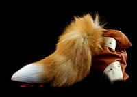 Хвост лисы
