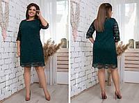 Модное женское гипюровое платье,размеры:48,50,52,54., фото 1
