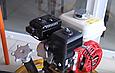 Затирочная машина AGT 4-600 (PFAGT4600W55D/E), фото 3