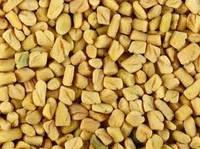 Семена пажитника хельбы шамбалы фенугрек 1кг Индия