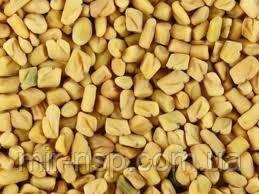 Семена пажитника хельбы шамбалы фенугрек 1кг Индия - Продукция для здоровья в Киеве