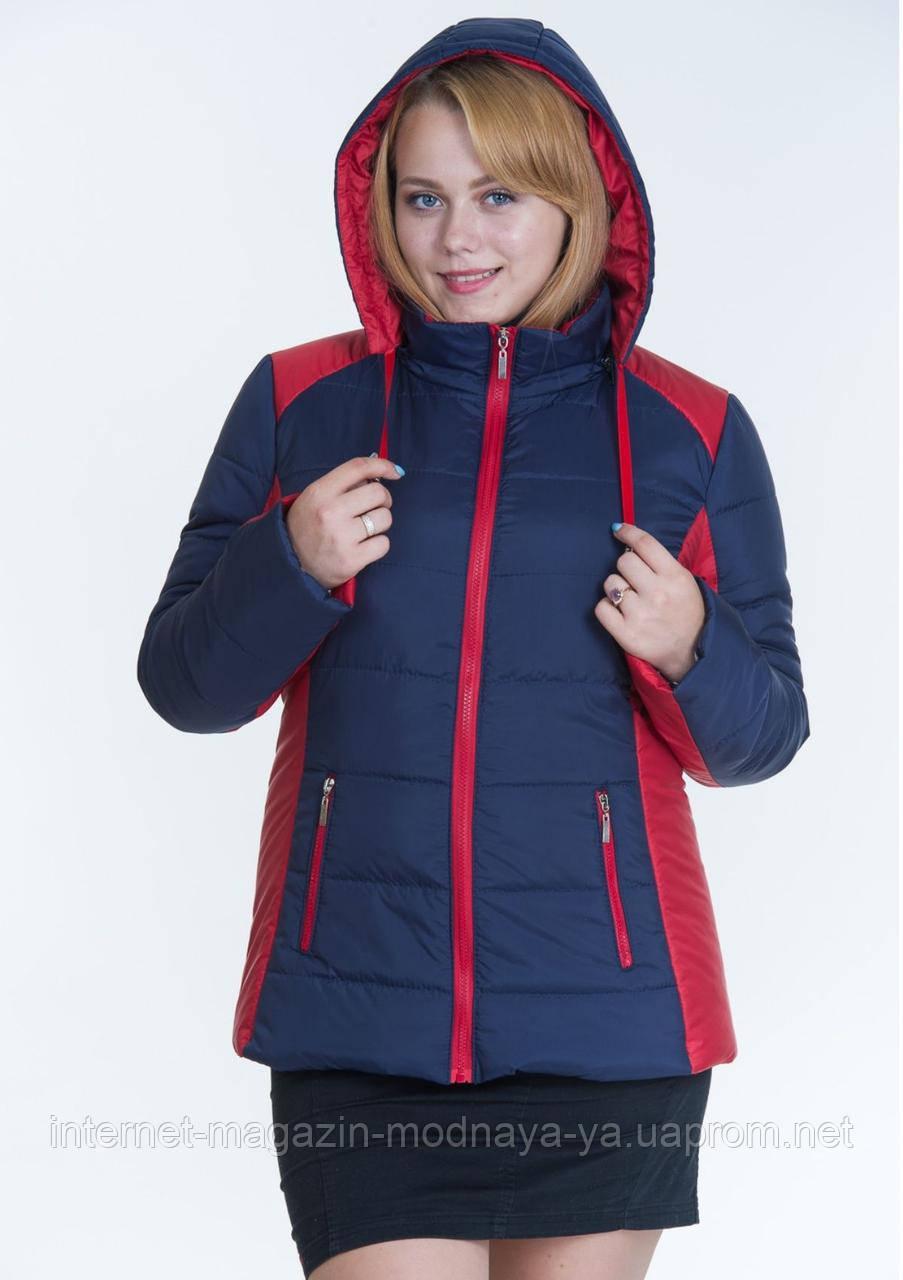 Куртка женская комбинированная №15 р. 44-56 синий с красным