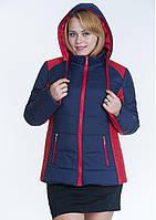 Куртка женская комбинированная №15 р. 44-56 синий с красным, фото 1