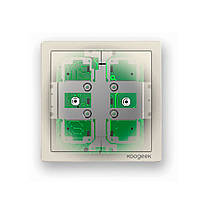 Умный выключатель Koogeek Two Gang Smart Light Switch KH02CN