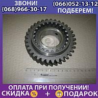Шестерня 3 передачи вала вторичного ЗИЛ (пр-во Россия) (арт. 130-1701131)