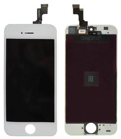 LCD экран+тачскрин Tina iPhone 5S ААА, фото 2