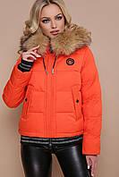 Куртка женская, цвет: оранжевый, размер: S, XS, L, M, XL