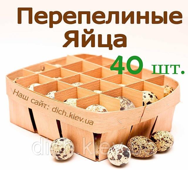 Перепелиные яйца в деревяной упаковке (40шт) BIO