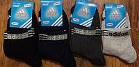 """Жіночі стрейчові шкарпетки в стилі """"Adidas Athletic""""Туреччина(36-39), фото 1"""