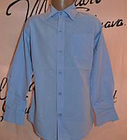 Голубая рубашка с длинным рукавом  128 164 Blueland