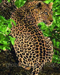 Картина по номерам - Леопард (КНО4101) 40 х 50 см