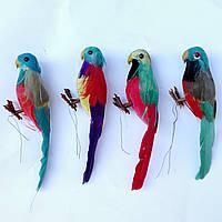 Попугай муляж 14 см