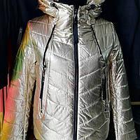 Куртка осенняя Jarius