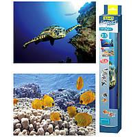 Tetra Turtle and Ree двусторонний фон для аквариума 60х45см