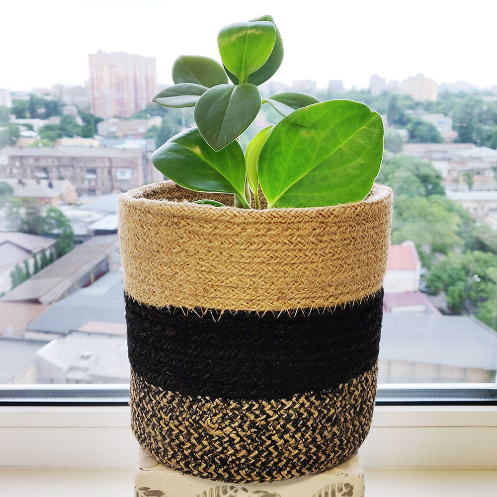 Кашпо джутовое плетеное