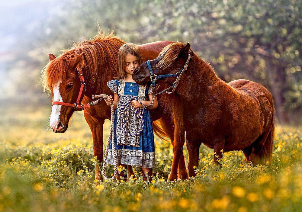Пазлы Castorland Девочка и лошадь 500 элементов