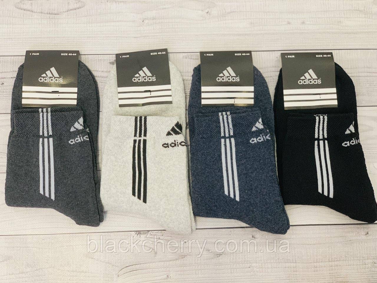 Носки мужские спорт Adidas махра