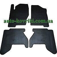 Резиновые коврики в салон Nissan Pathfinder III (R51) 2005-2010 (Stingray) Стингрей