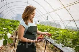 Разнорабочий на ферму в Канаду (работник теплицы), SK