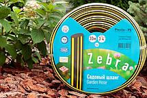 Шланг поливочный Presto-PS садовый Зебра диаметр 3/4 дюйма, длина 30 м (ZB 3/4 30), фото 3