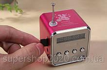 Міні портативна MP3 колонка від USB FM TD-V26