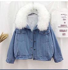 Куртка с мехом, фото 3