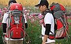 Рюкзак Pentagram, 50 л, Туризм, Спорт, Активний відпочинок, Універсальний, фото 5
