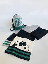 Детская шапка для мальчика BIMBUS Италия 153IDLA002 серая с зеленым, наушники темно-синие