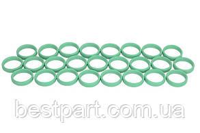 Кільця ущільнюючі ALFA ROMEO, FIAT №10 - зелені