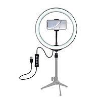 LED кольцо для блогеров, визажистов, стилистов  Puluz 26 см. диаметр