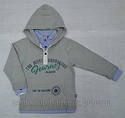 Дитяча бавовняна толстовка Academy для хлопчика сіра р. 116-152 см (QuadriFoglio, Польща)