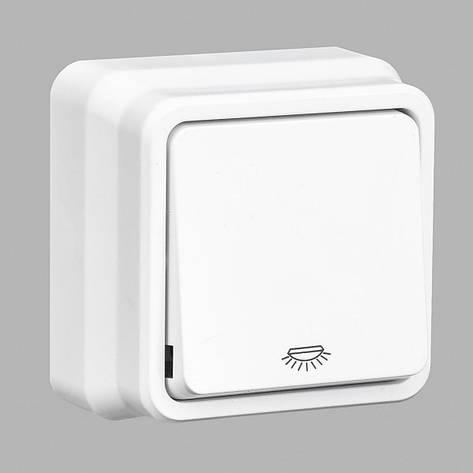 Misya кнопка контроля освещения 1-ая наружная белая, фото 2