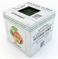 Бергамот.  Аромавоск, аромамасла, благовония, эфирное масло для аромаламп, фото 1