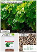 Сельдерей листовой (Зипер) ТМ 'Весна' 0.5г, фото 1