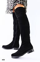 Сапоги Ботфорты без каблука замшевые черные, фото 1