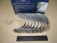 Вкладыши коренные Р6 ЯМЗ 236 (ДЗВ). 236-1000102 Р6