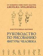Конструктивная анатомия: руководство по рисованию фигуры человека. Бриджмен Д.