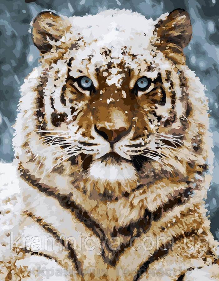 Картина по номерам 40x50 Уссурийский тигр (КНО4140)