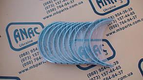 320/09202 Вкладыши коренные STD на JCB 3CX, 4CX, фото 2