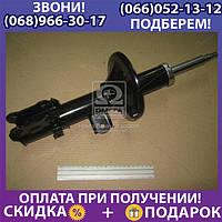 Амортизатор передний правый (масло) (пр-во Mobis) (арт. 546601C000)