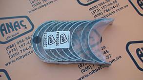 320/09203 Вкладиші 0,25 корінні на JCB 3CX, 4CX, фото 2