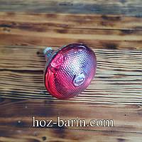 Лампа інфрачервона (прессованое скло) 175Вт
