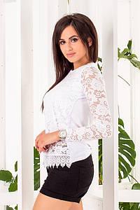 """Гипюровая женская блуза """"LINKA"""" с длинным рукавом (2 цвета)"""