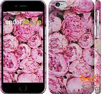 """Женский чехол на iPhone 6 """" Розовые пионы """""""