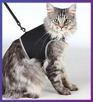 Trixie TX-41896 поводок и шлея для кошек  ( 24–42  см )