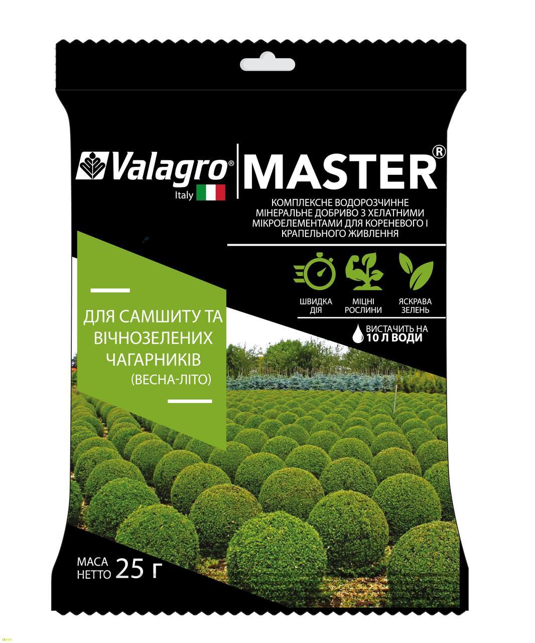Мастер комплексное минеральное удобрение для самшита и вечнозеленых кустарников, 25 г