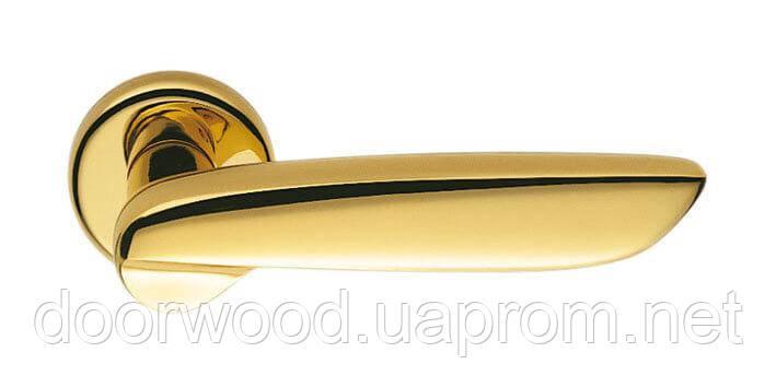 Дверная ручка Colombo Design Daytona PF11 полированная латунь