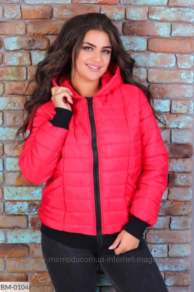 Куртка осенняя  BM-0094 р :S,M,L,XL<XXL-XXXL 059579 красный